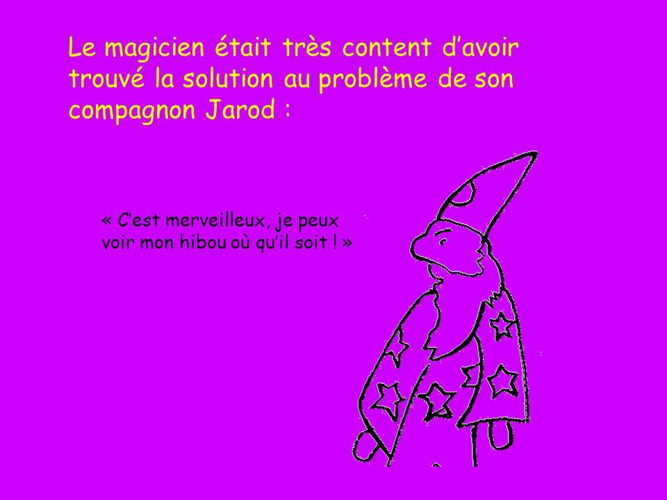 Le magicien était très content d'avoir trouvé la solution au problème de son compagnon Jarod :