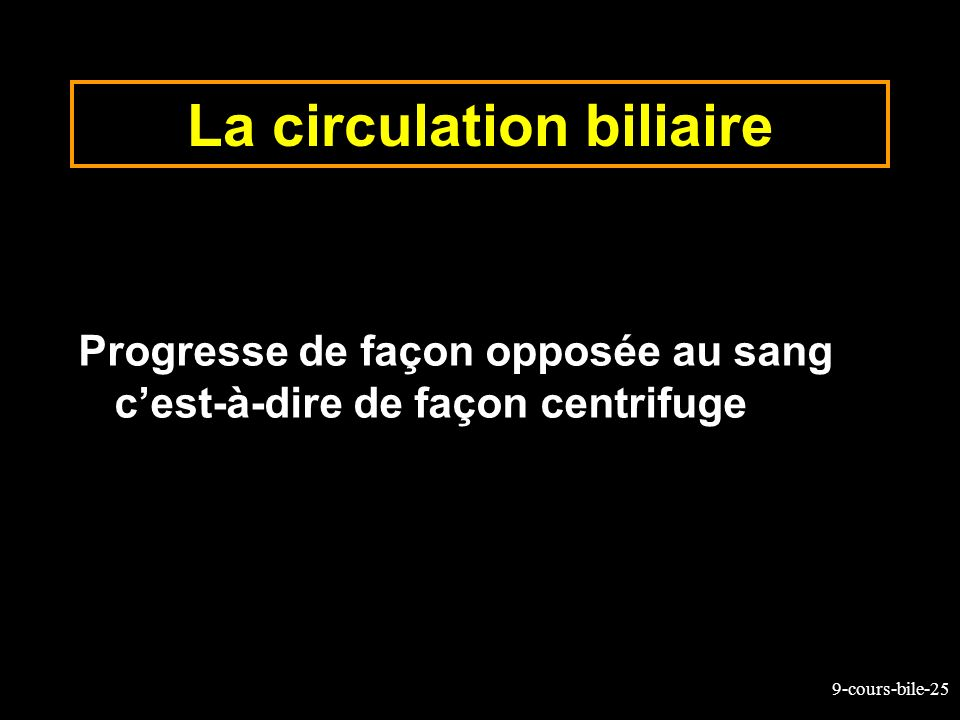 La circulation biliaire