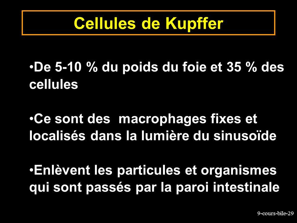 Cellules de Kupffer De 5-10 % du poids du foie et 35 % des cellules