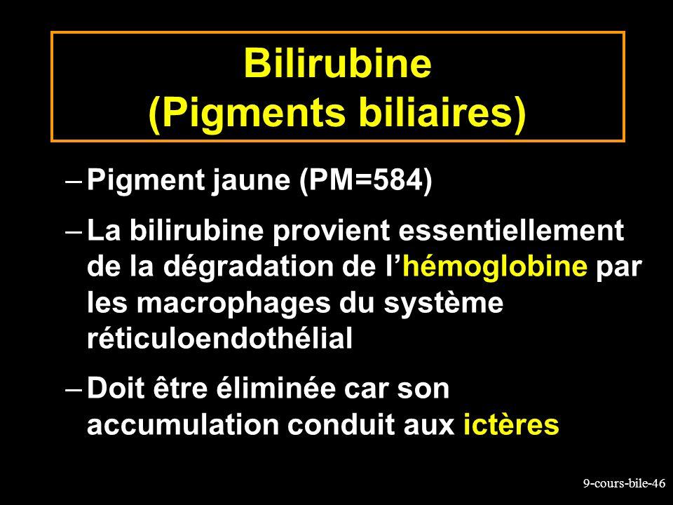 Bilirubine (Pigments biliaires)