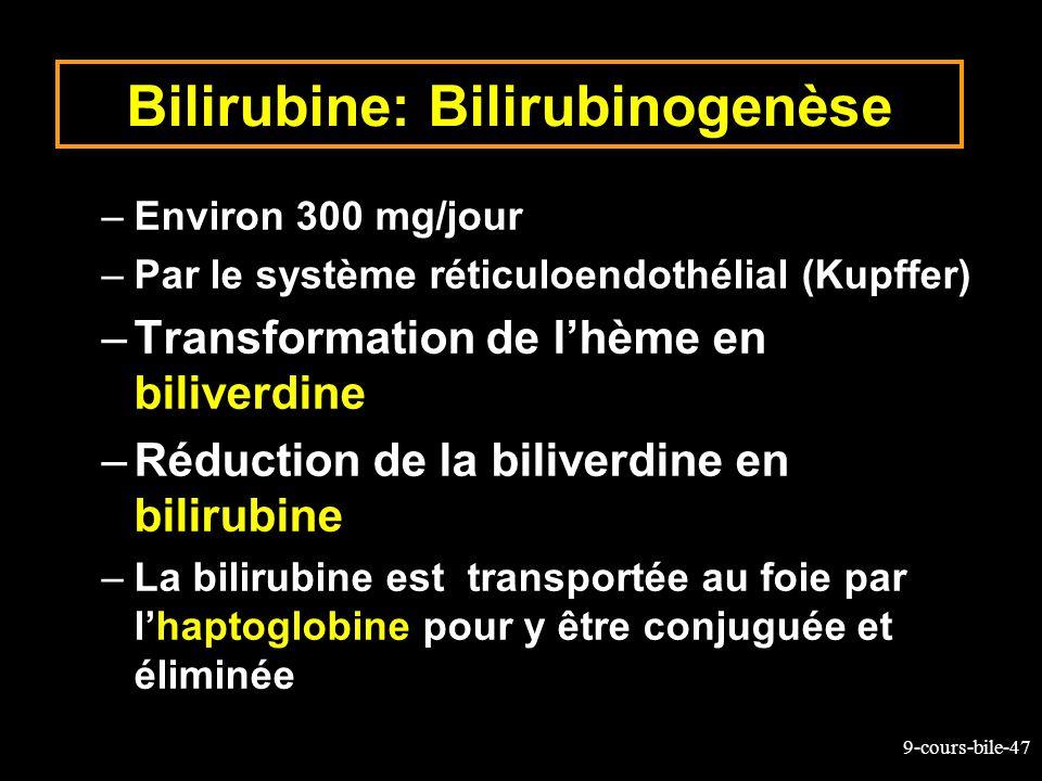 Bilirubine: Bilirubinogenèse