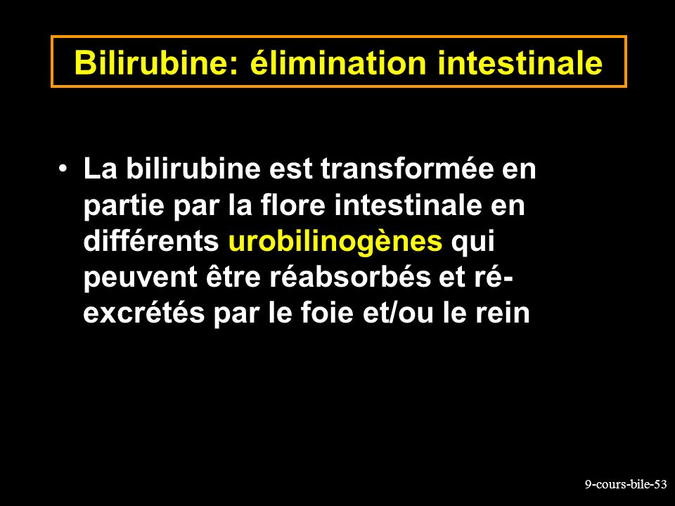 Bilirubine: élimination intestinale