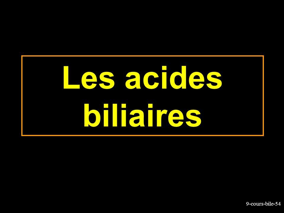 Les acides biliaires
