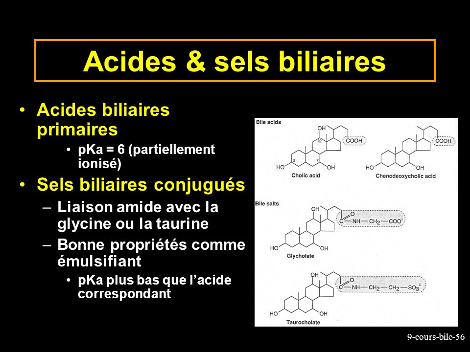 Acides & sels biliaires