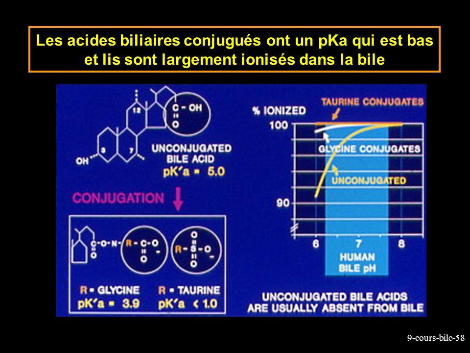 Les acides biliaires conjugués ont un pKa qui est bas et lis sont largement ionisés dans la bile