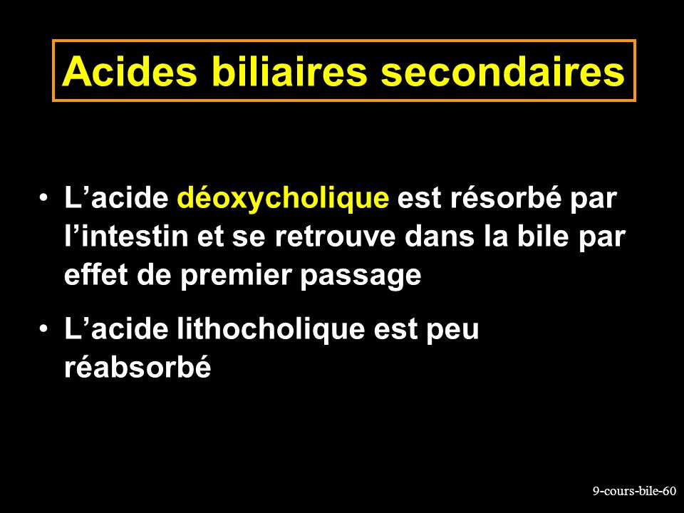 Acides biliaires secondaires