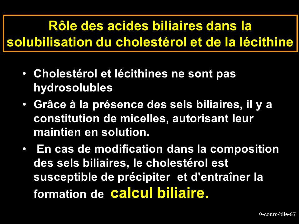 Rôle des acides biliaires dans la solubilisation du cholestérol et de la lécithine