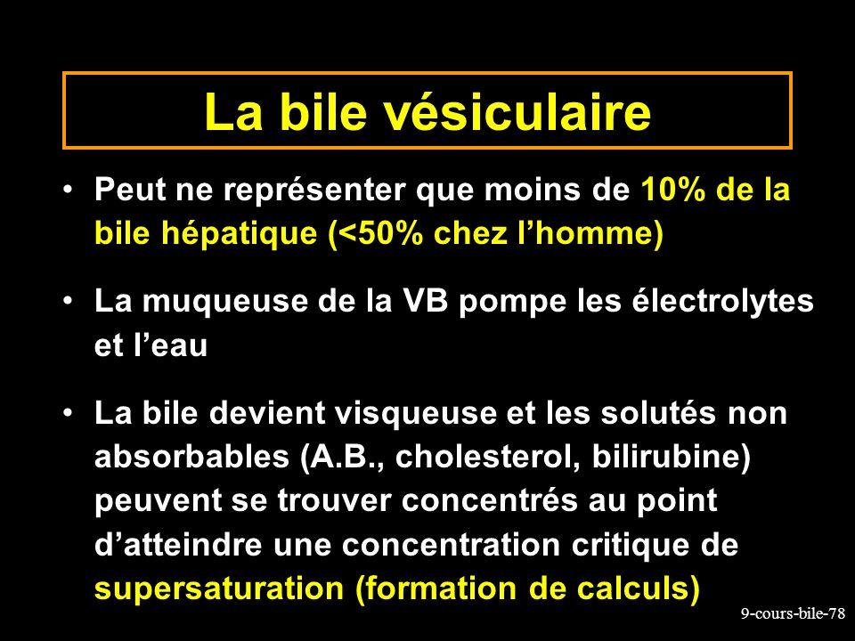 La bile vésiculairePeut ne représenter que moins de 10% de la bile hépatique (<50% chez l'homme)