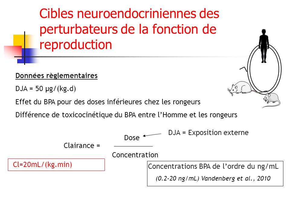 Cibles neuroendocriniennes des perturbateurs de la fonction de reproduction