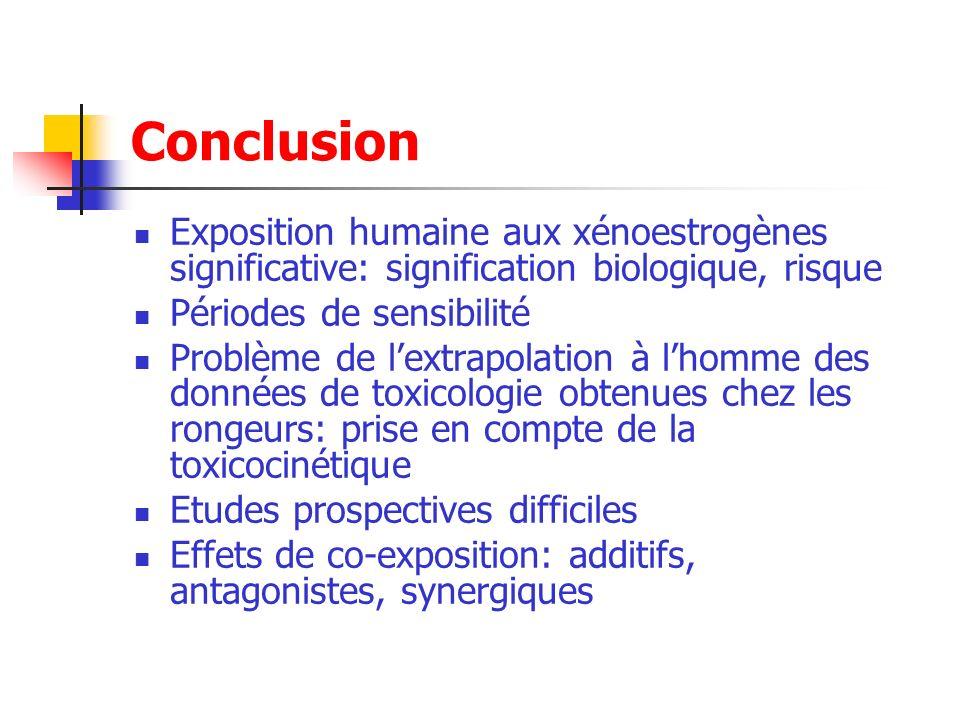 Conclusion Exposition humaine aux xénoestrogènes significative: signification biologique, risque. Périodes de sensibilité.