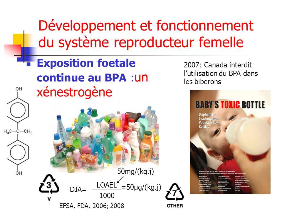 Développement et fonctionnement du système reproducteur femelle