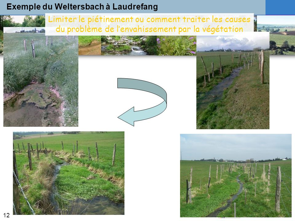 Exemple du Weltersbach à Laudrefang