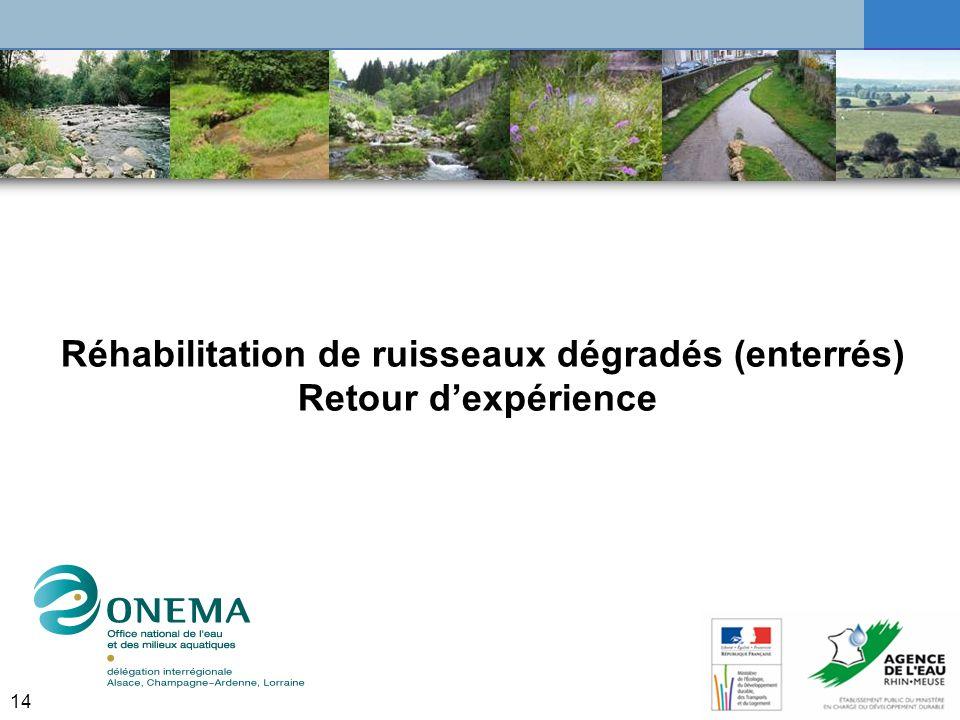 Réhabilitation de ruisseaux dégradés (enterrés)