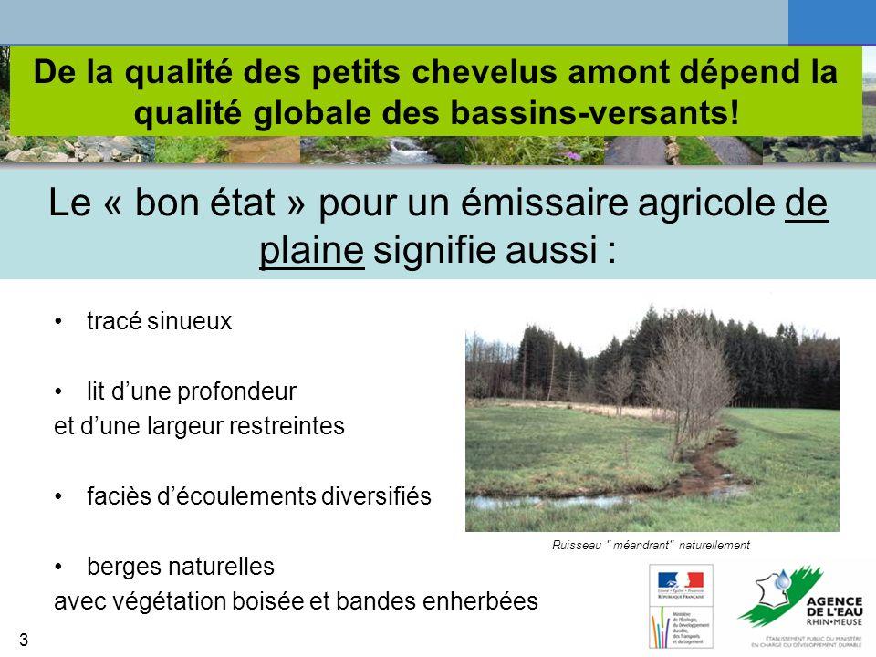 Le « bon état » pour un émissaire agricole de plaine signifie aussi :