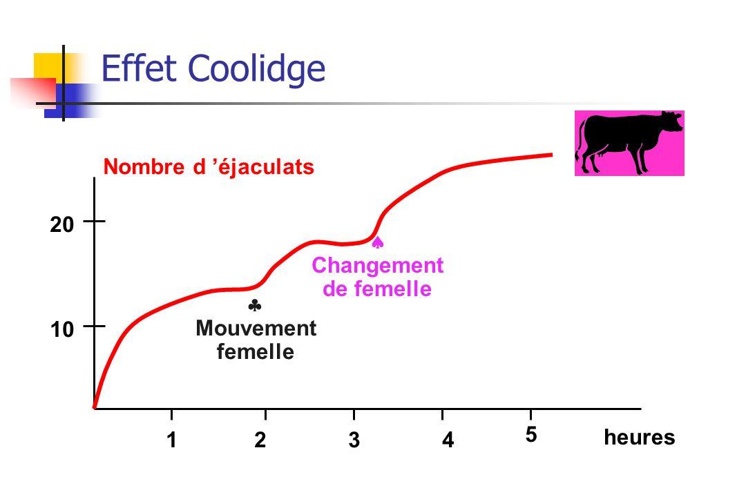 Effet Coolidge Nombre d 'éjaculats 20  Changement de femelle 
