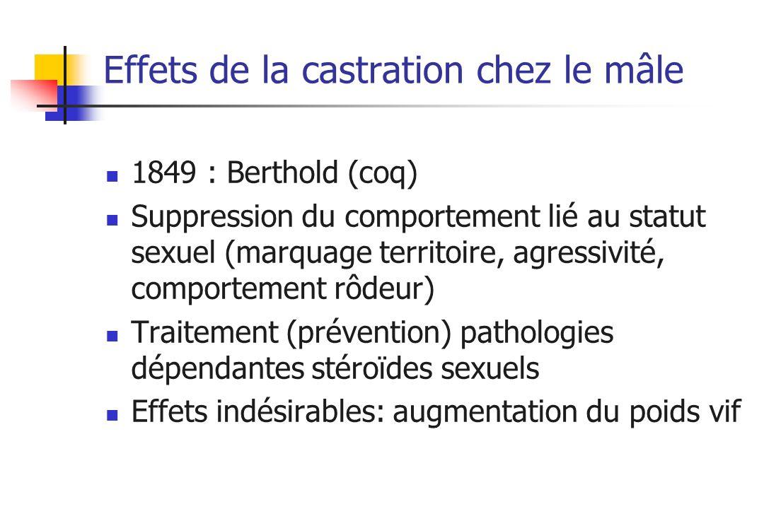 Effets de la castration chez le mâle