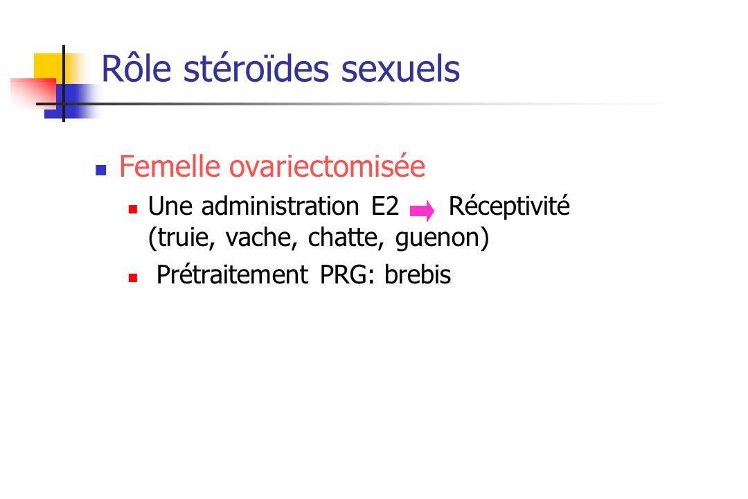 Rôle stéroïdes sexuels