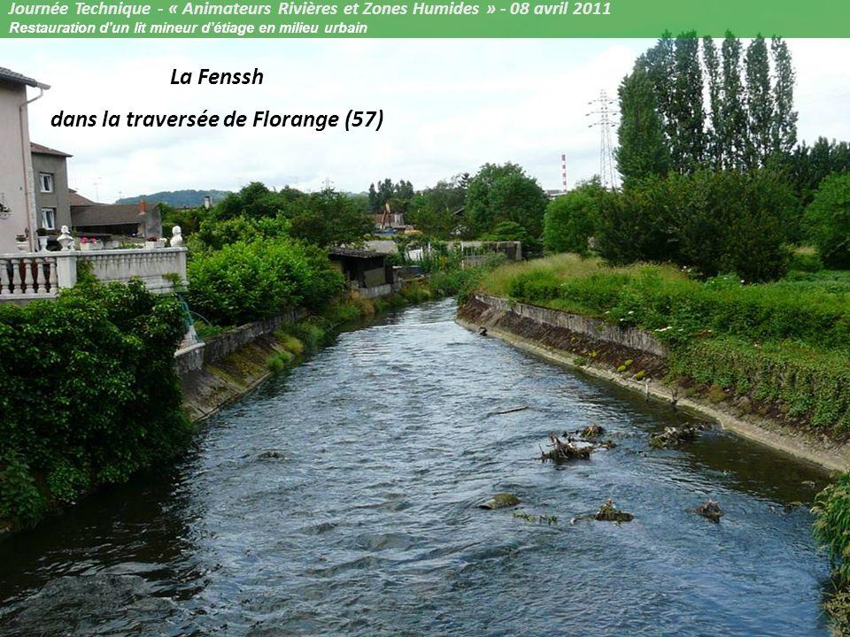 Restauration d un lit mineur d tiage ppt video online for Florange 57