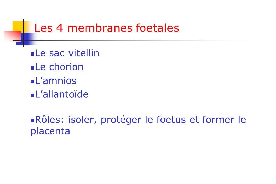 Les 4 membranes foetales