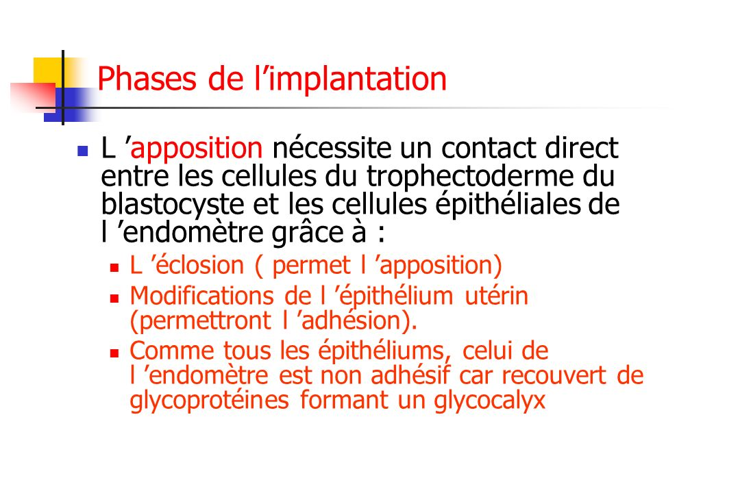 Phases de l'implantation