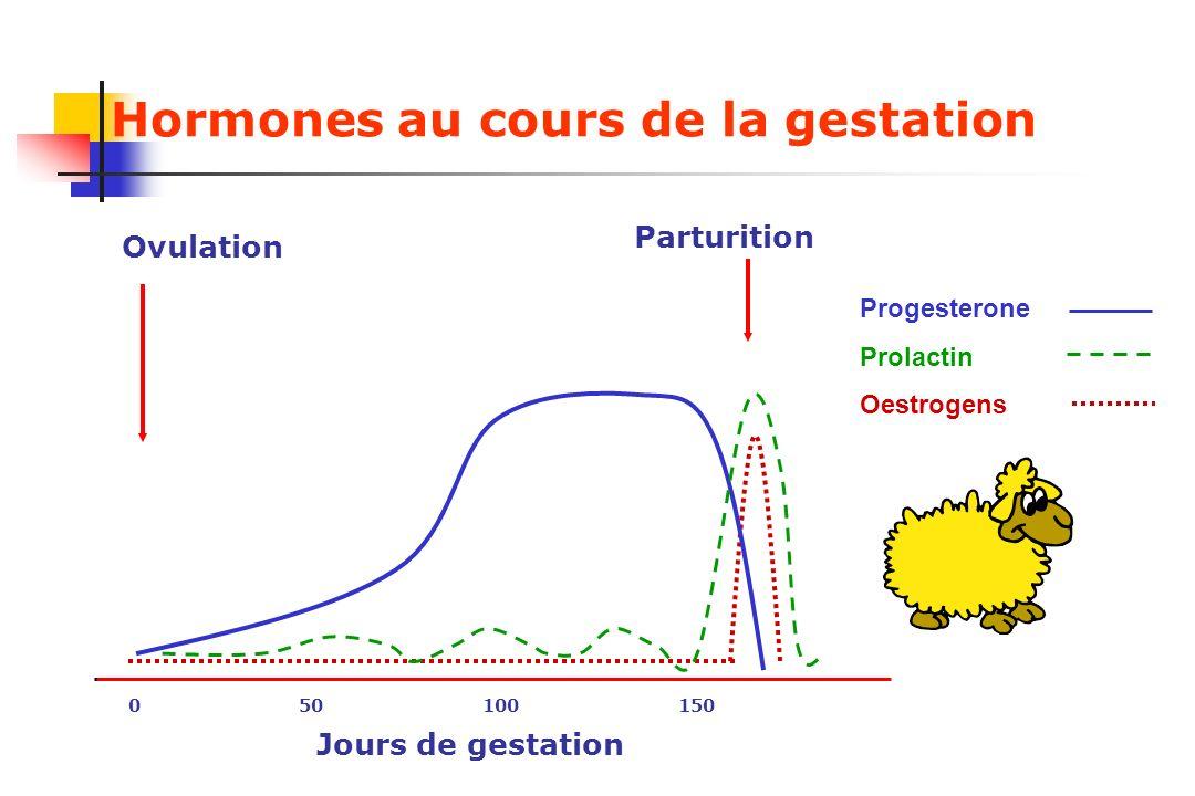 Hormones au cours de la gestation