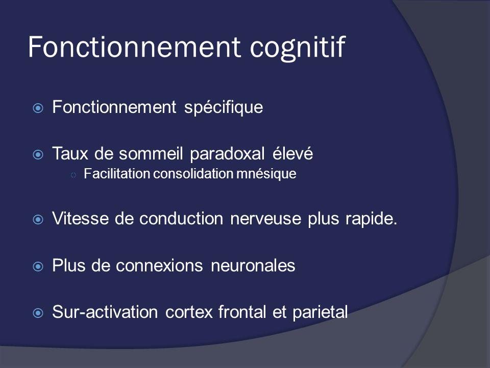 Fonctionnement cognitif