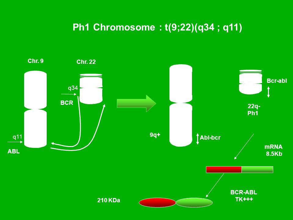 Ph1 Chromosome : t(9;22)(q34 ; q11)