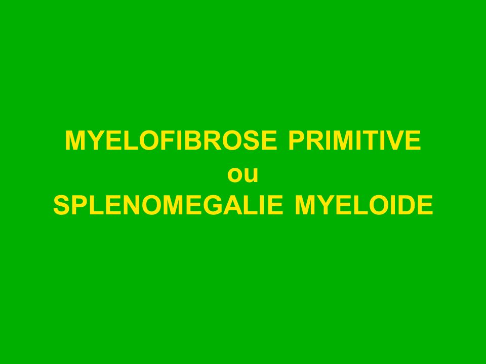 MYELOFIBROSE PRIMITIVE ou SPLENOMEGALIE MYELOIDE
