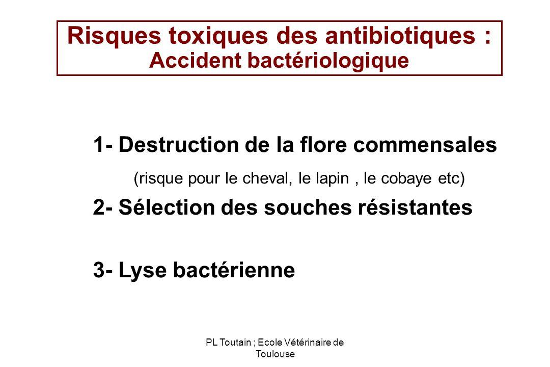 Risques toxiques des antibiotiques : Accident bactériologique
