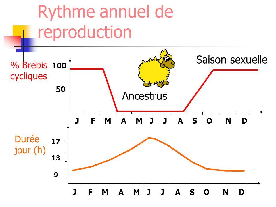 Rythme annuel de reproduction