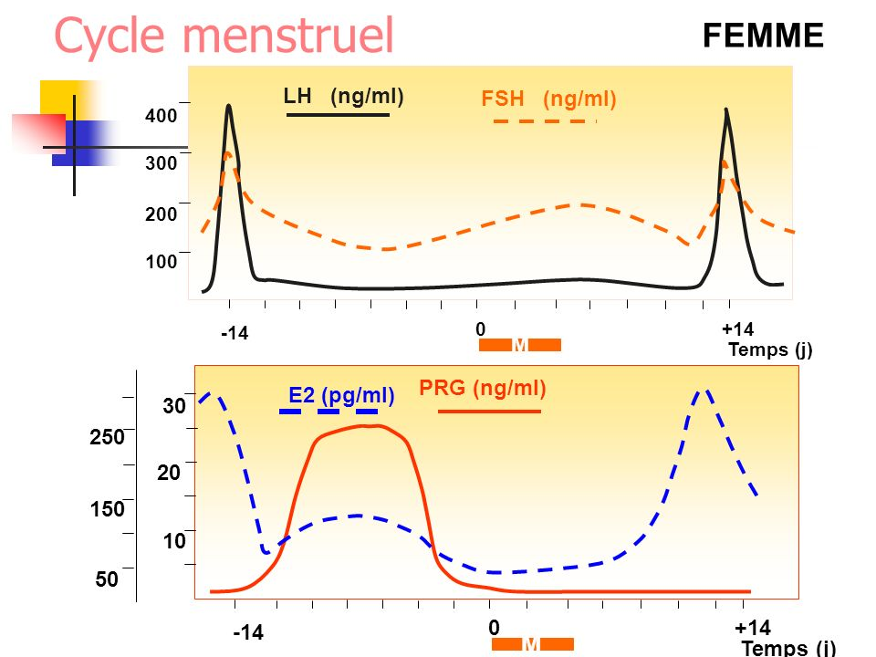 Cycle menstruel FEMME M LH (ng/ml) FSH (ng/ml) M PRG (ng/ml)