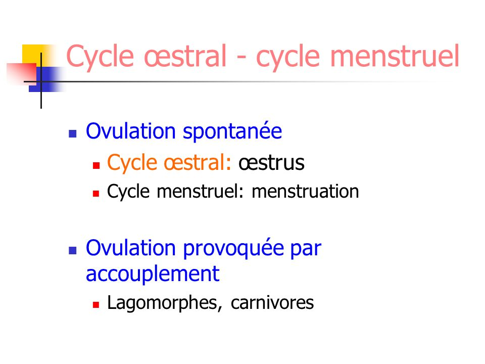 Cycle œstral - cycle menstruel