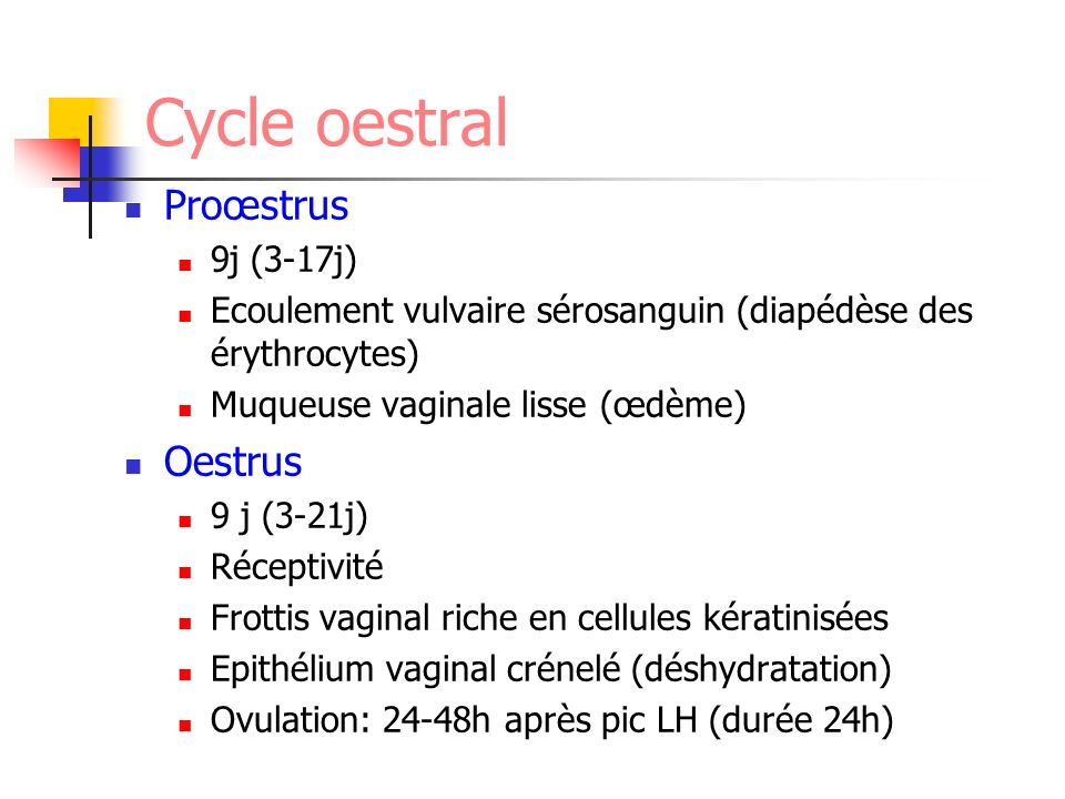 Cycle oestral Proœstrus Oestrus 9j (3-17j)