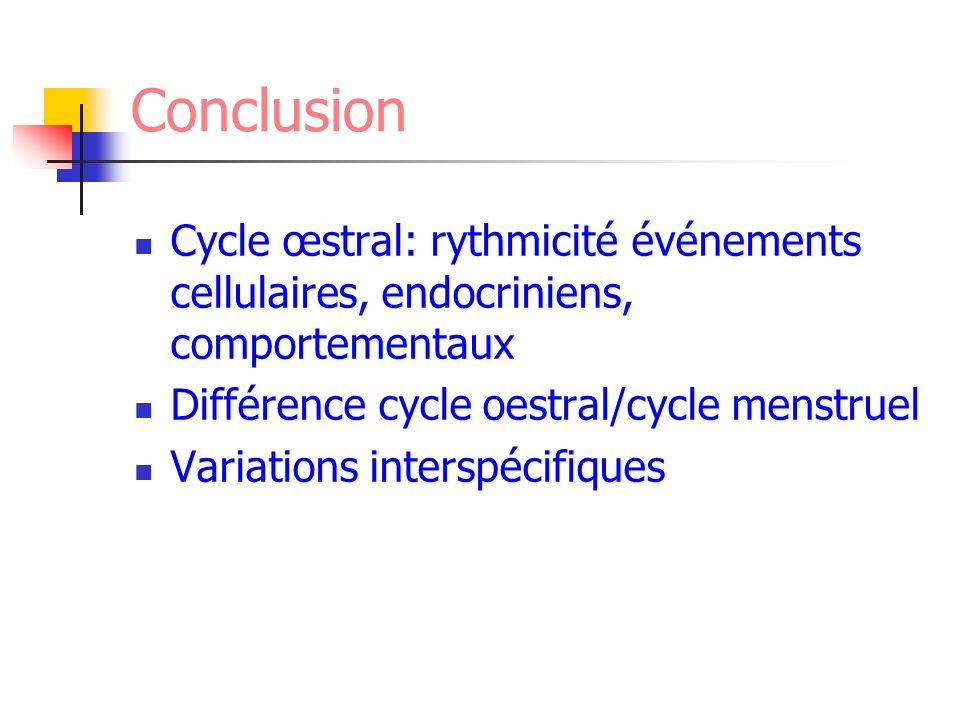 Conclusion Cycle œstral: rythmicité événements cellulaires, endocriniens, comportementaux. Différence cycle oestral/cycle menstruel.