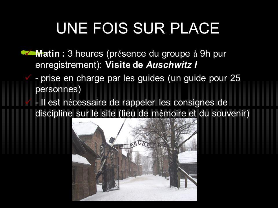 UNE FOIS SUR PLACE Matin : 3 heures (présence du groupe à 9h pur enregistrement): Visite de Auschwitz I.