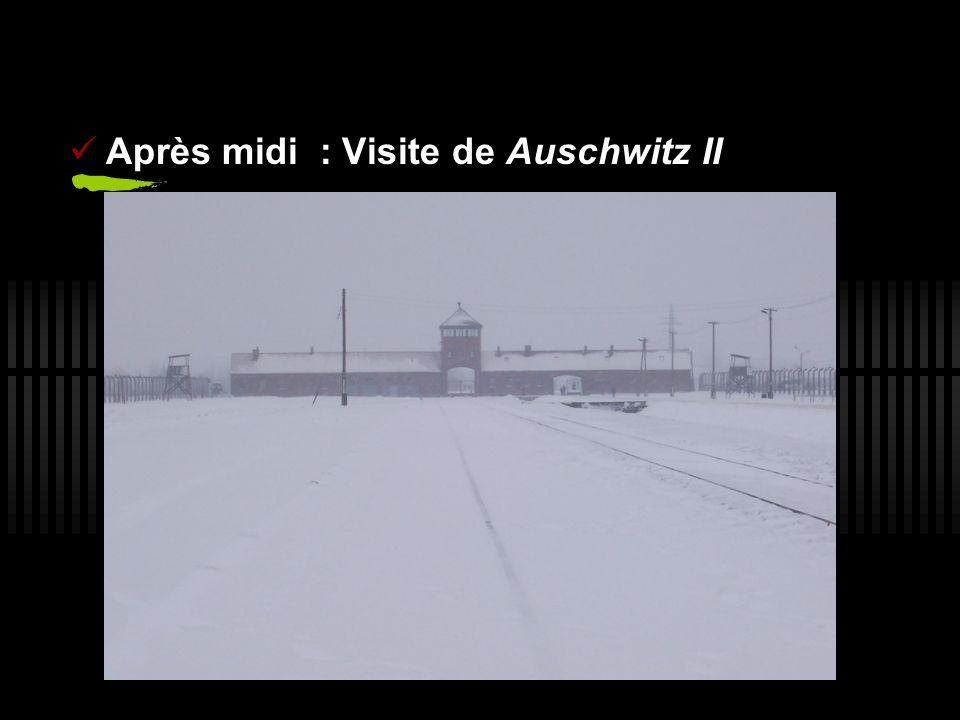 Après midi : Visite de Auschwitz II