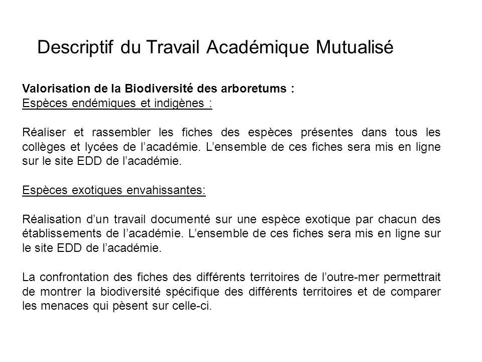 Descriptif du Travail Académique Mutualisé