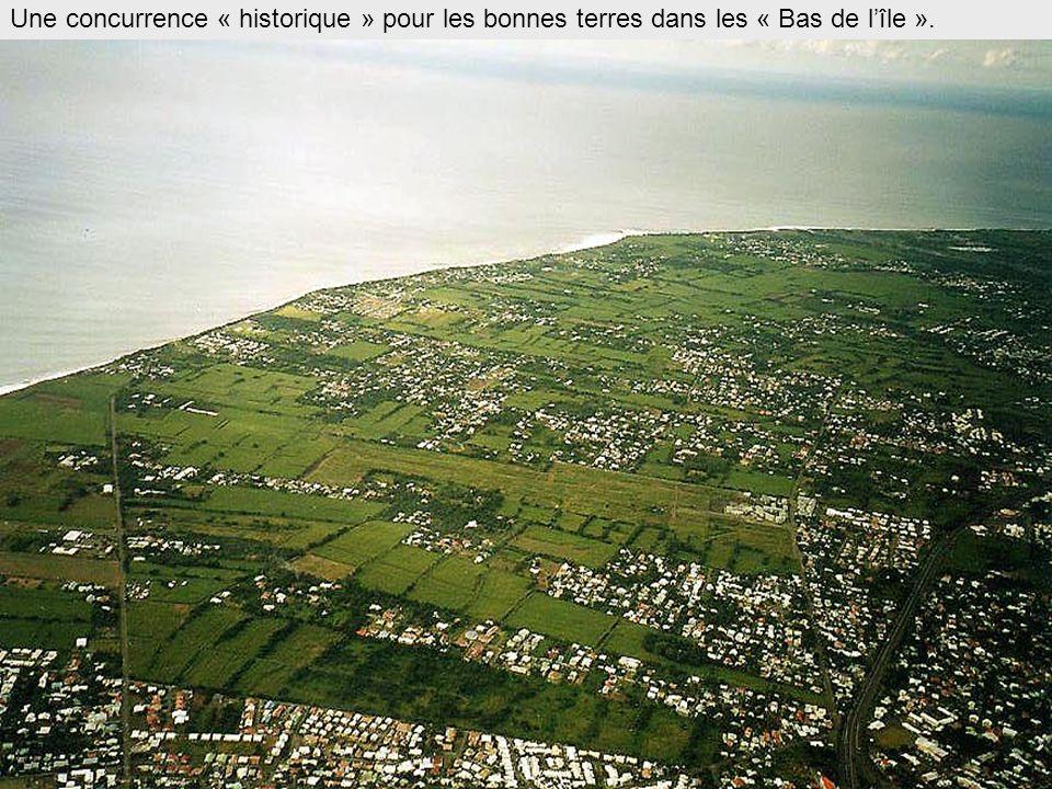 Une concurrence « historique » pour les bonnes terres dans les « Bas de l'île ».