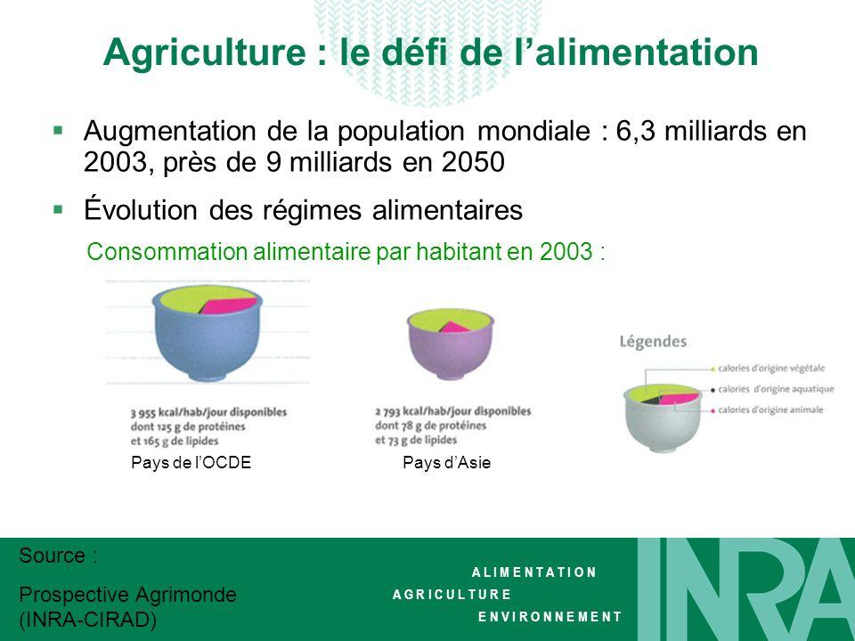 Agriculture : le défi de l'alimentation