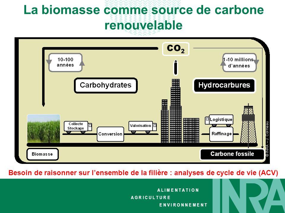 La biomasse comme source de carbone renouvelable