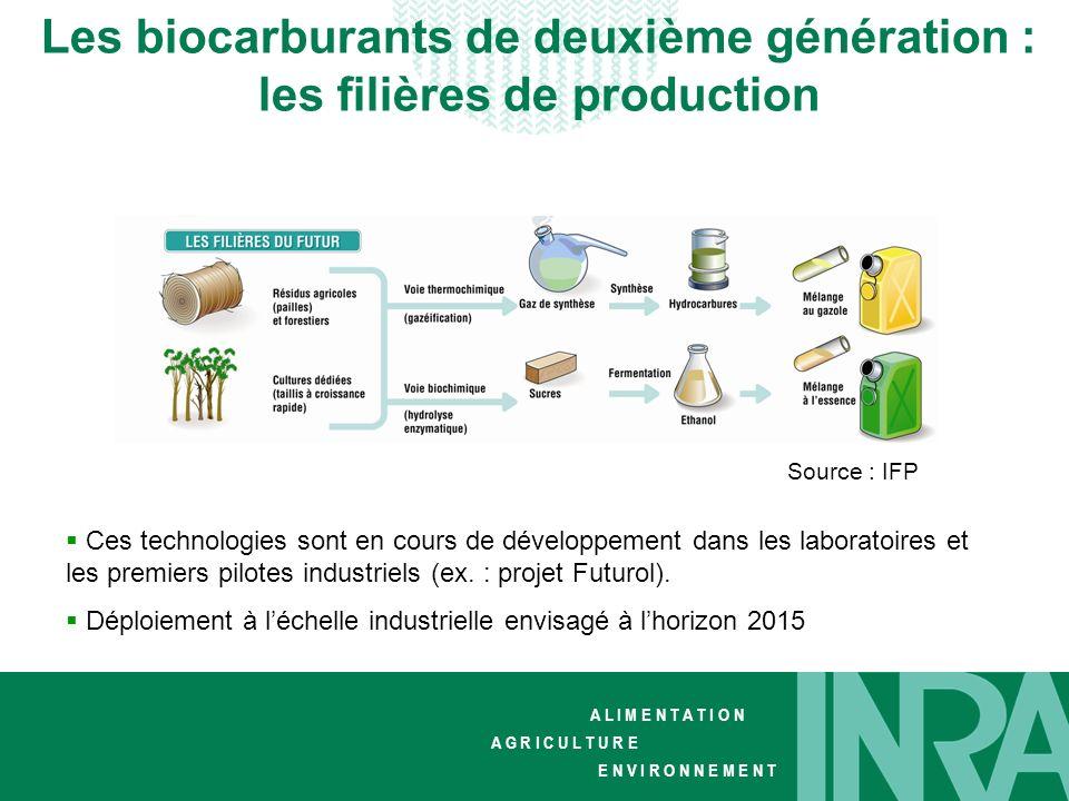Les biocarburants de deuxième génération : les filières de production