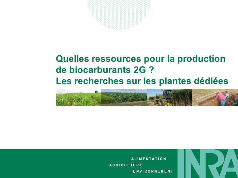 Quelles ressources pour la production de biocarburants 2G