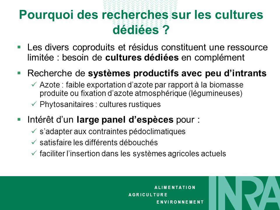 Pourquoi des recherches sur les cultures dédiées