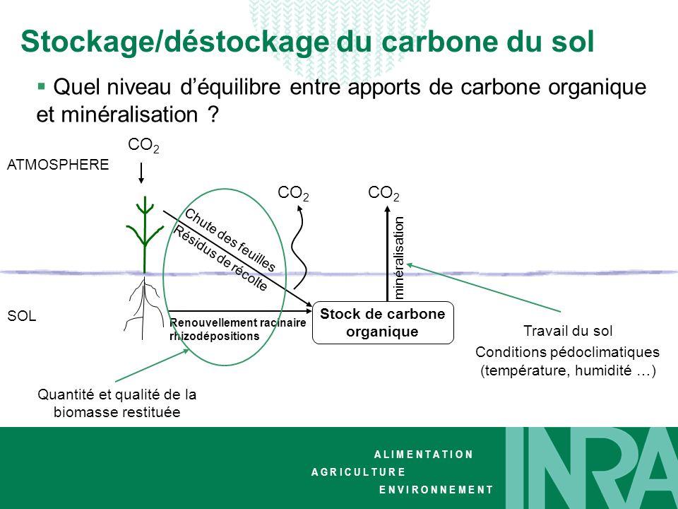 Stock de carbone organique