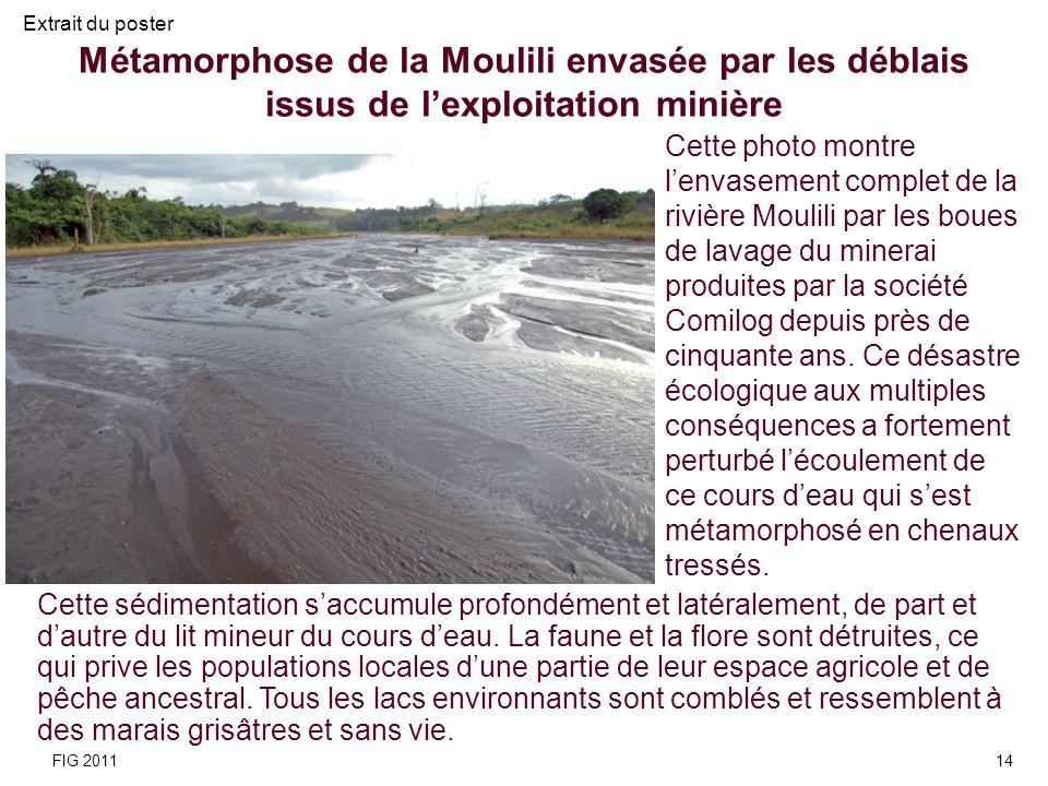 Extrait du poster Métamorphose de la Moulili envasée par les déblais issus de l'exploitation minière.