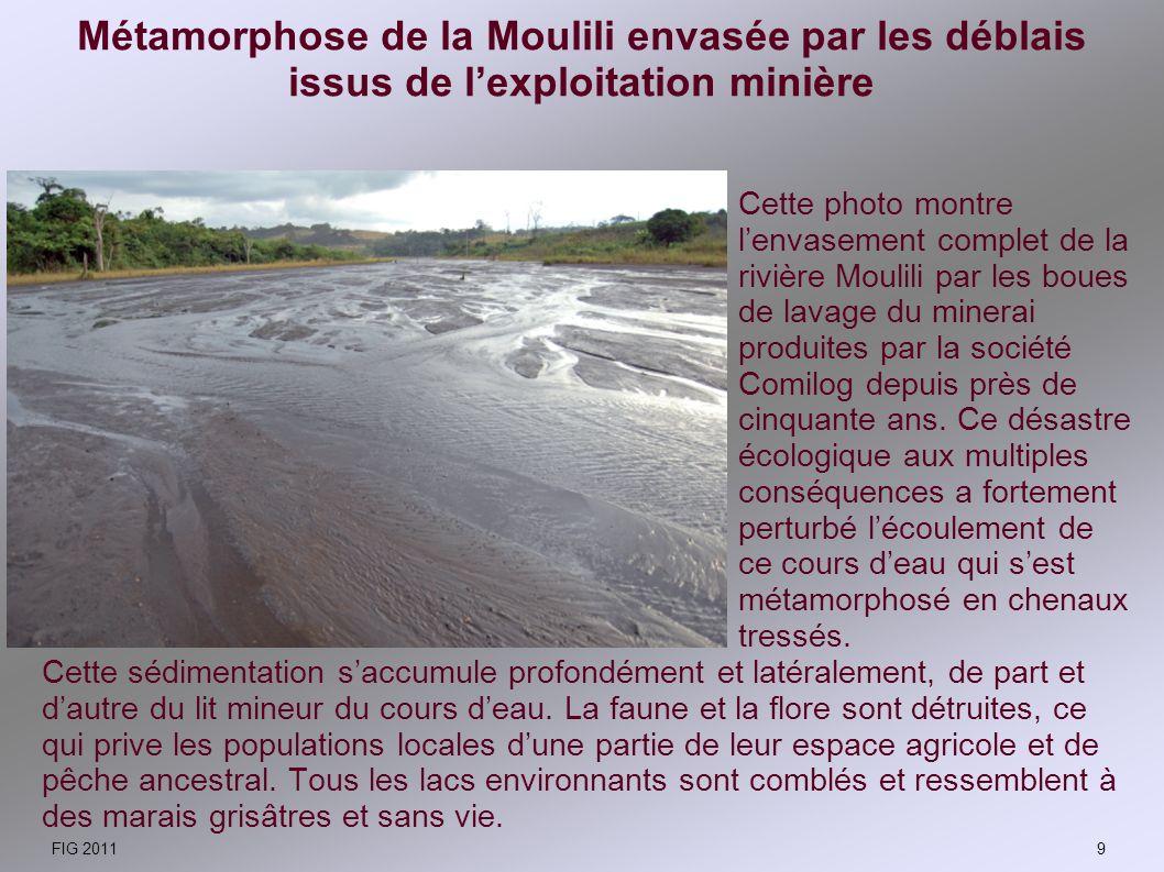 Métamorphose de la Moulili envasée par les déblais issus de l'exploitation minière