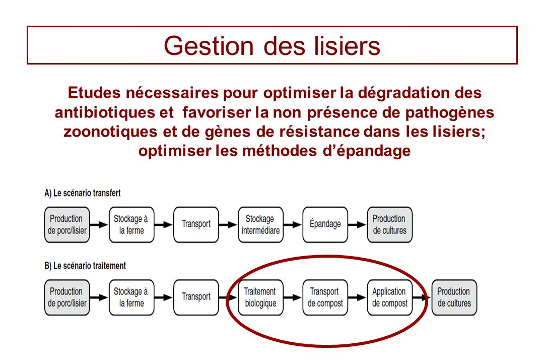 Gestion des lisiers