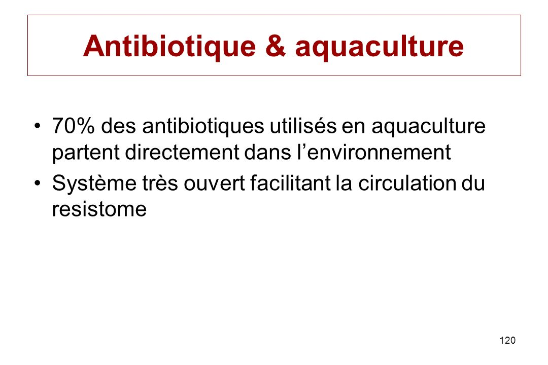 Antibiotique & aquaculture