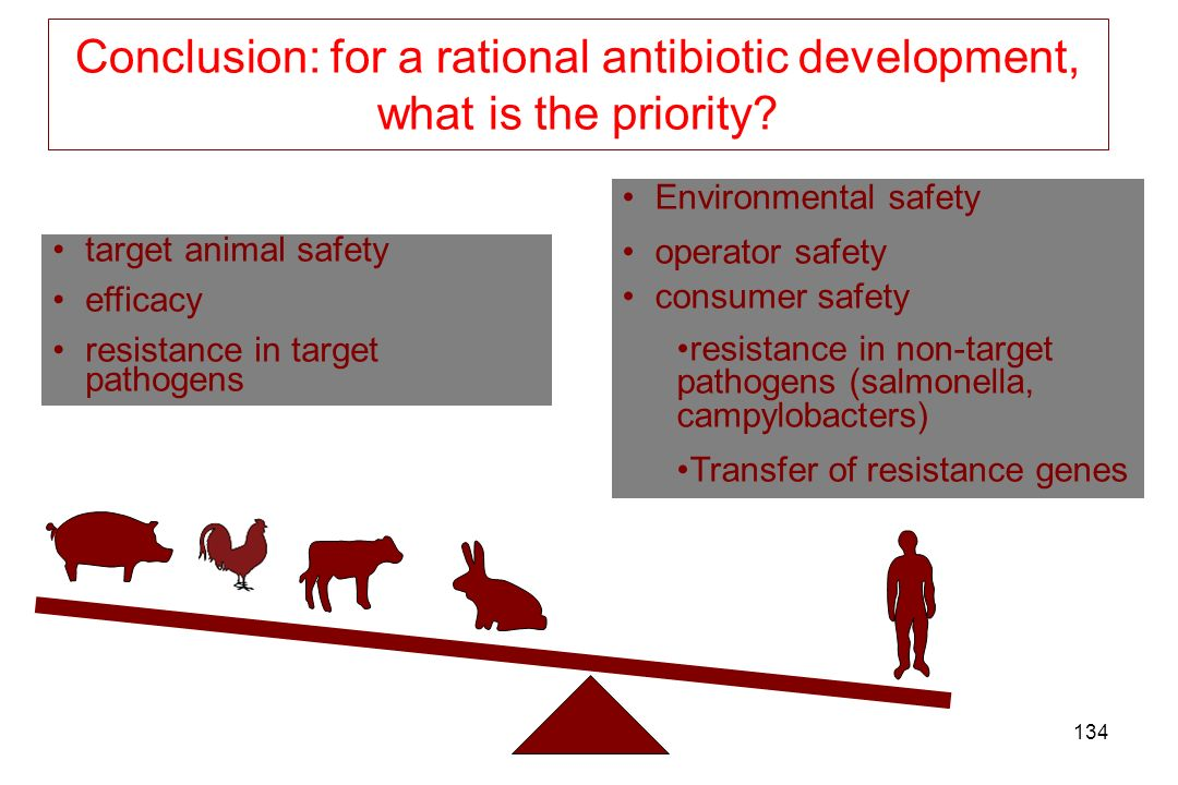 Conclusion: for a rational antibiotic development, what is the priority