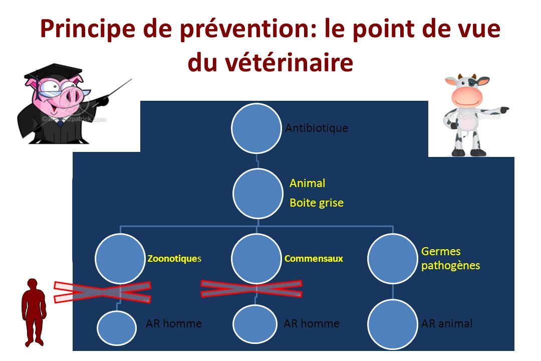 Principe de prévention: le point de vue du vétérinaire